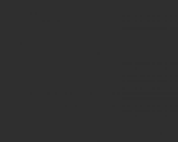 Single Portfolio – Side Slideshow